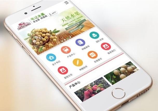 手机微信网站开发解决方案